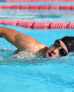 Man som simmar frisim.